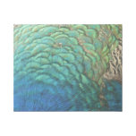 Peacock Feathers I Colorful Abstract Nature Design Gallery Wrap