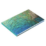 Peacock Feathers I Colorful Abstract Nature Design Guest Book