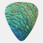 Peacock Feathers I Colorful Abstract Nature Design Guitar Pick