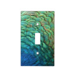Peacock Feathers I Colorful Abstract Nature Design Light Switch Cover