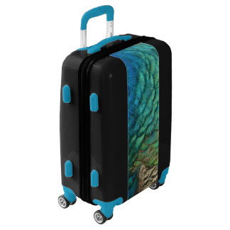 Peacock Feathers I Colorful Abstract Nature Design Luggage