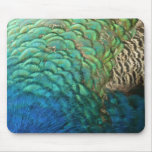 Peacock Feathers I Colorful Abstract Nature Design Mouse Pad