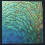 """Peacock Feathers I Colorful Abstract Nature Design Napkin<br><div class=""""desc"""">I love the iridescent shades of blue and green in peacock feathers. Here&#39;s an abstract view of the side of a peacock and his beautiful feathers from Barbados. This picture is the first in a series of four different peacock feather views, and is also featured as a widescreen wallpaper on...</div>"""