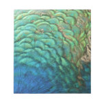 Peacock Feathers I Colorful Abstract Nature Design Notepad