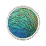 Peacock Feathers I Colorful Abstract Nature Design Pin