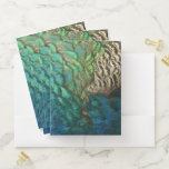Peacock Feathers I Colorful Abstract Nature Design Pocket Folder