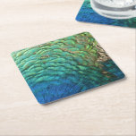 Peacock Feathers I Colorful Abstract Nature Design Square Paper Coaster