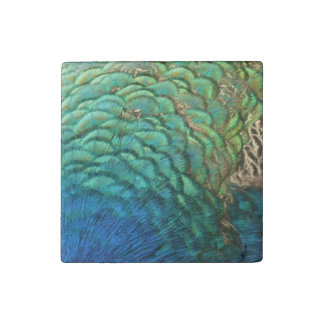 Peacock Feathers I Colorful Abstract Nature Design Stone Magnet
