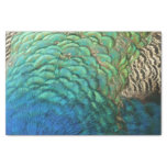 Peacock Feathers I Colorful Abstract Nature Design Tissue Paper