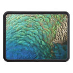 Peacock Feathers I Colorful Abstract Nature Design Tow Hitch Cover