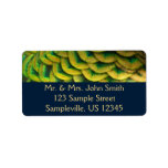 Peacock Feathers II Colorful Nature Design Label