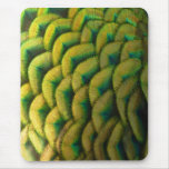 Peacock Feathers II Colorful Nature Design Mouse Pad