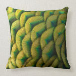 Peacock Feathers II Colorful Nature Design Throw Pillow