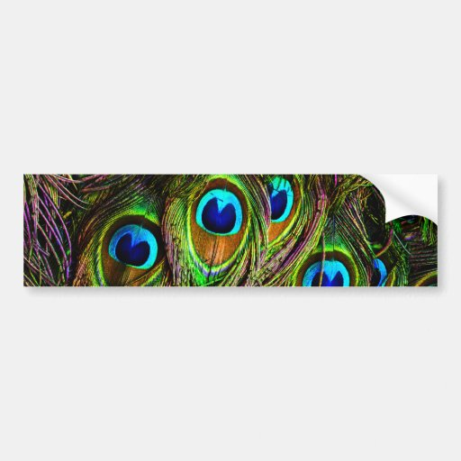 Peacock Feathers Invasion Car Bumper Sticker