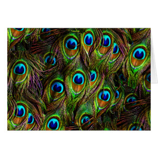 Peacock Feathers Invasion Card
