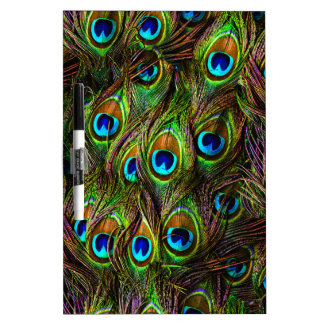 Peacock Feathers Invasion - Dry Erase Board