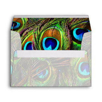 Peacock Feathers Invasion - Envelope
