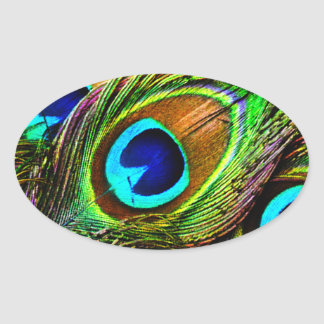 Peacock Feathers Invasion - Oval Sticker