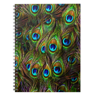 Peacock Feathers Invasion Spiral Notebook