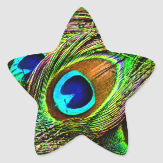 Peacock Feathers Invasion - Star Sticker