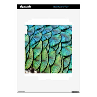 Peacock Feathers iPad 2 Skins