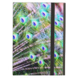 Peacock Feathers iPad Cases