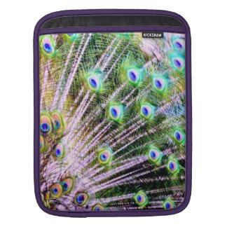 Peacock Feathers iPad Sleeves
