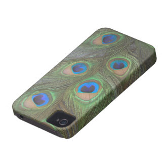 Peacock Feathers iPhone 4 Barely There Case
