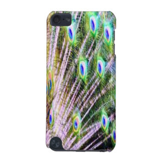 Peacock Feathers iPod Touch (5th Generation) Cover