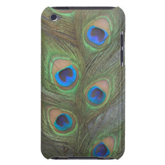 Peacock Feathers iPod Touch Barely There Case iPod Case-Mate Case