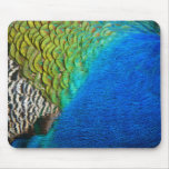 Peacock Feathers IV Colorful Nature Design Mouse Pad