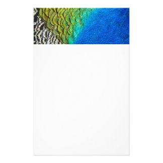 Peacock Feathers IV Colorful Nature Design Stationery