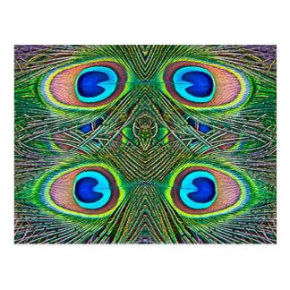 Peacock Feathers Kaleidoscope Print Postcards