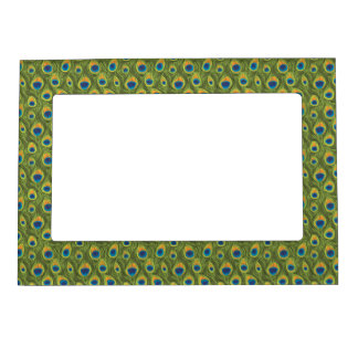 Peacock Feathers Magnetic Frame