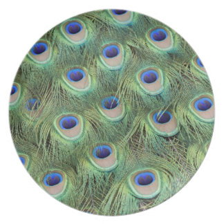Peacock Feathers Melamine Plate