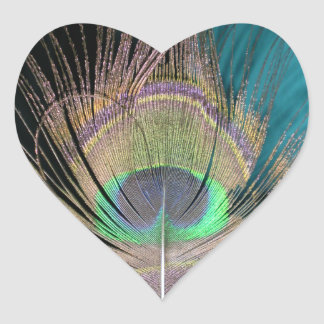 Peacock Feathers on black and turquoise Heart Sticker
