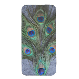 Peacock Feathers on Gray iPhone 5 Pouch
