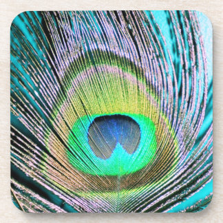 Peacock Feathers on turquoise Drink Coaster