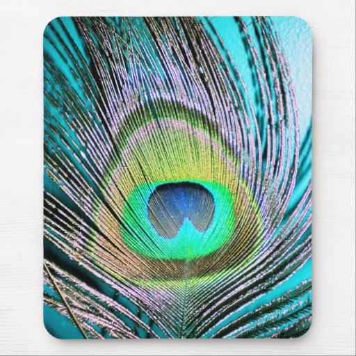Peacock Feathers on turquoise Mouse Pad