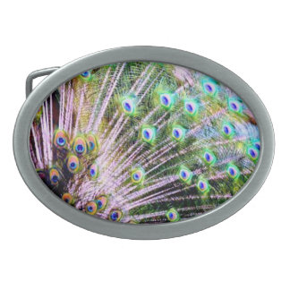 Peacock Feathers Oval Belt Buckle