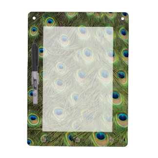 Peacock Feathers Pattern Dry-Erase Board