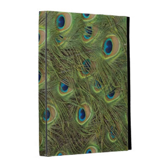 Peacock Feathers Pattern iPad Case
