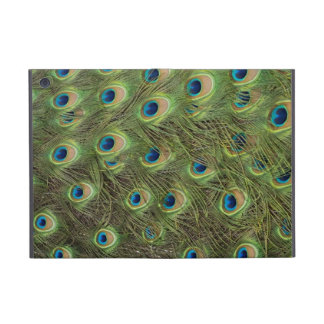 Peacock Feathers Pattern iPad Mini Covers