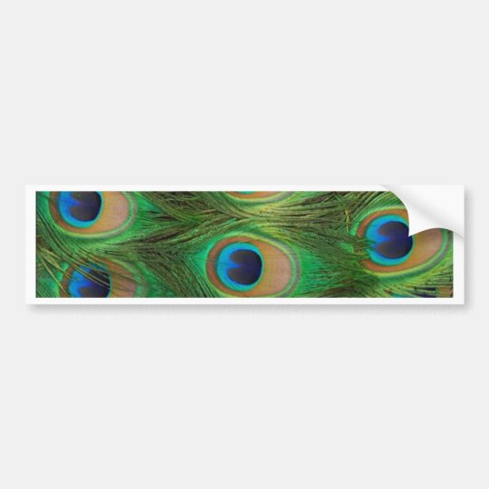 Peacock Feathers - Peafowl Bumper Sticker