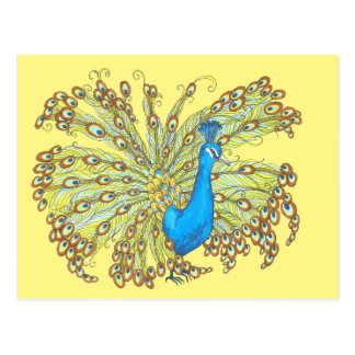 Peacock Feathers Pen and Ink Yellow Postcard