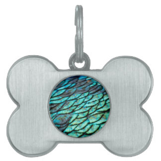Peacock Feathers Pet Tag