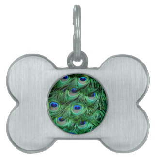 Peacock Feathers Pet Name Tag