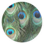 peacock feathers plate