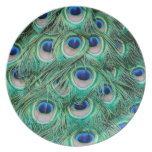 Peacock Feathers Plates