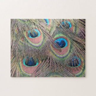 Peacock Feathers Puzzle